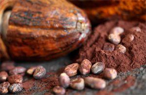 cacao-22-24-irca
