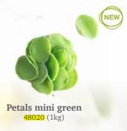 petals-mini-green-dobla