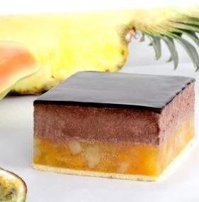 fruttidor-tropical-irca